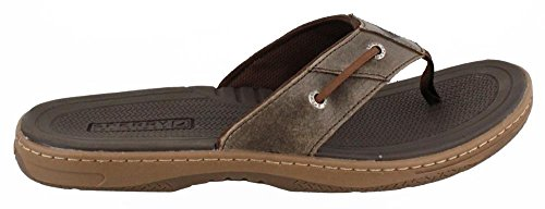Sperry Top-Sider Men's Baitfish Thong Sandal Brown