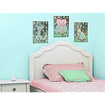 The Kids Room by Stupell Canvas Wall Art, 10x15, Multi Color Distressed Woodland Owl: Home & Kitchen