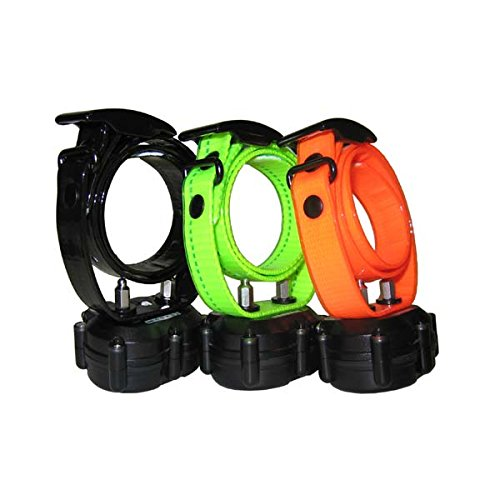 DT Systems Micro-IDT Remote Dog Trainer Add-On Collar in Green by DT Systems