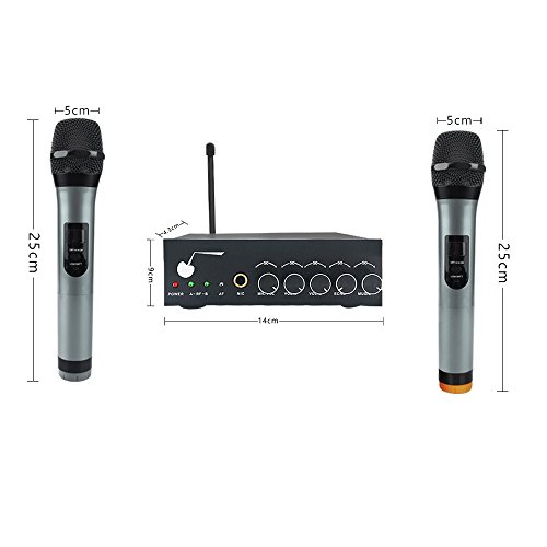 dual microphone karaoke machine