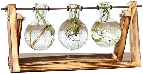 sahnah Desktop Glass Planter Bulb Vase with Retro Solid Wooden Stand and Metal Swivel Holder for Hydroponics Plants Home Office Decor