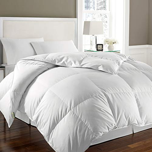 Kathy Ireland 240 Thread Count 100% Cotton Solid Cover White Goose Feather and Goose Down Comforter