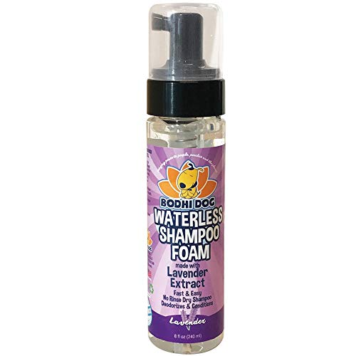 Lavender Dry Shampoo Foam | No Rinse