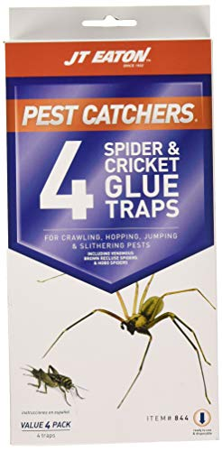 J T Eaton 646437141239 JT Eaton 844 Pest Catchers Large Spider and Cricket Size Attractant Sc