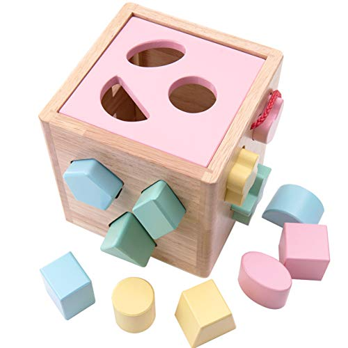 (Babe Rock Shape Color Sorter Toddler Toy - Wooden Childrens Color Recognition Shape Sorting Cube Lid for Toddlers Learning Sort and Match Toys for 3 Years Old Boys Girls (Pink))