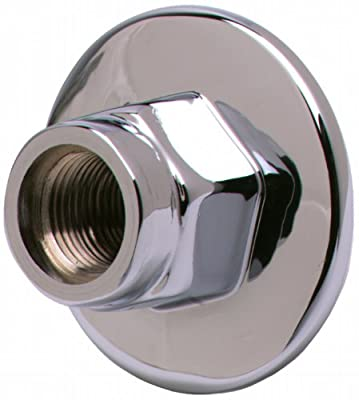 T&S Brass BL-4250-03 Lab Panel Flange, 3/8-Inch Npt Female Inlet and Outlet