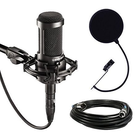 Technica Audio Recording (Audio-Technica AT2035 Large Diaphragm Studio Condenser Microphone Bundle with Shock Mount, Pop Filter, and XLR Cable)