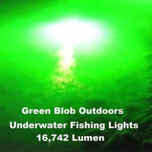 Green Underwater Fishing Light Dock 16742 Lumen 110 Volt AC with 3 Prong Plug, LED Fish Attractor System with 30ft Power Cord, Bait rig, Fish attractant, Ponds, Fishing Lure (Green)