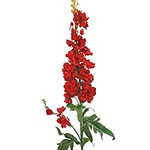 """V-Max Floral Decor 38"""" Real Touch Delphinium Spray, Red (Pack of 12) 109"""