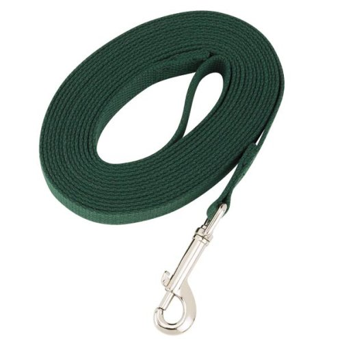Guardian Gear 30-Feet Cotton Web Dog Training Lead, Green, My Pet Supplies