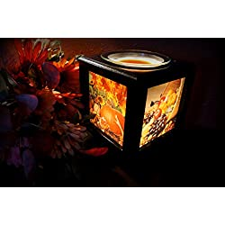 Memory Box Picture Frame Lamp and Electric Wickles