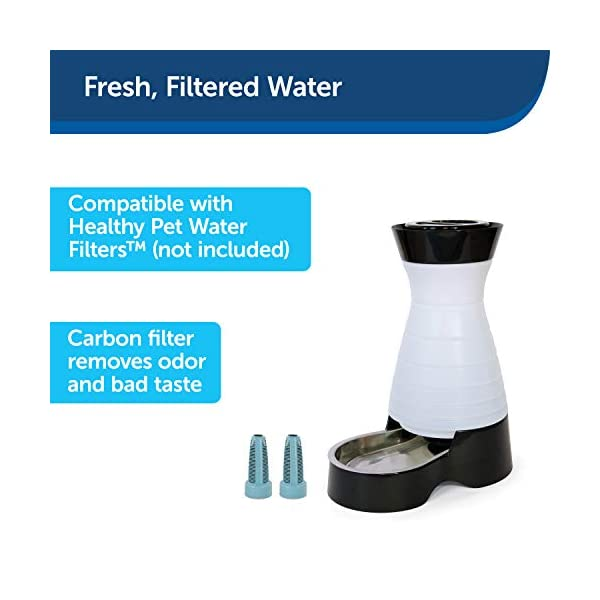 PetSafe Healthy Pet Gravity Food or Water Station, Automatic Dog and Cat Feeder or Water Dispenser, Small, Medium, Large 4