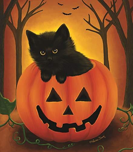 Halloween Kitten 300 pc Halloween Jigsaw Puzzle by SunsOut -