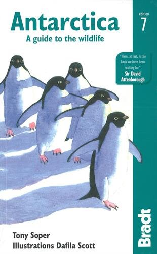 Antarctica: A Guide to the Wildlife (Bradt Travel Guide)