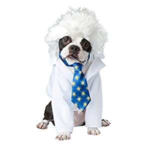 California Costume Collections PET20150 Al-Bark Einstein Dog Costume, Small