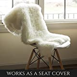 Super Area Rugs Luxury New Zealand Shearling 2x3