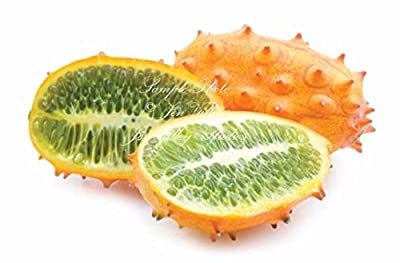 20 Seeds African Horned Cucumber Vegetable Garden Natural NON GMO Heirloom African Kiwano Unique Fun Easy to Grow cool, prehistoric look