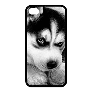 Black and White Photograph Animal Series Fashion Husky Dog Design Hot Custom Luxury Cover Case For iphone 6 plus and 6 plus(Black) with Best Silicon Rubber ALL MY DREAMS