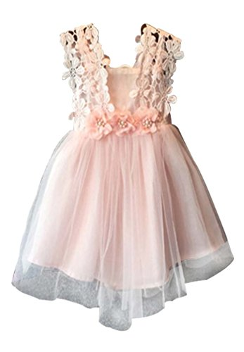 Baby Girls Sleeveless Lace Wedding Vintage Birthday Party Princess Flower Dress 4T(Tag 130) Pink ()