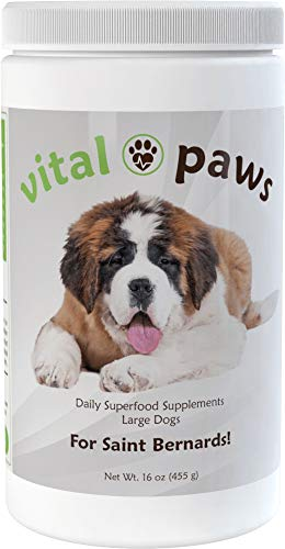 Vital Paws for Saint Bernards | Daily Superfood Biscuits | Dog Multivitamins & Supplements | Contains Omega-3 Fish Oils, Turmeric, Probiotics, and More! (Best Food For Saint Bernard)