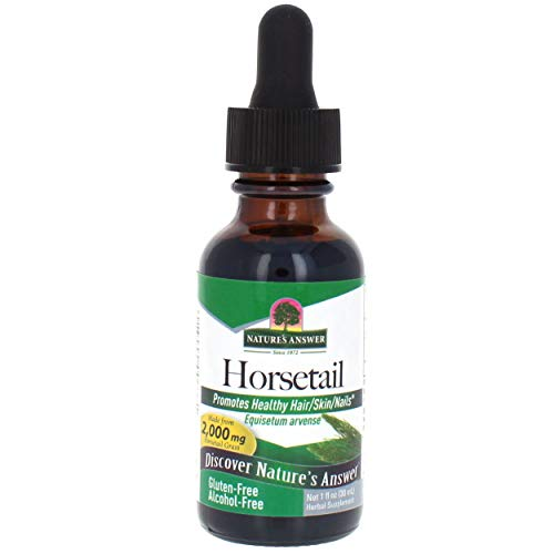 Nature's Answer Horsetail Extract Alcohol Free 1 Oz Super Concentrated Promotes Healthy Hair, Skin & Nails