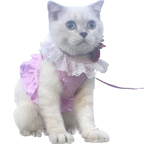 (Creation Core Breathable Cat Lace Dress Harness with Matching Lead Leash)