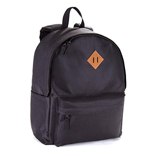 ol Laptop Backpack fits up to 15.6 - Black Backpack Brown Accent (15 Inch Backpack)