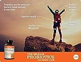 NatureWise Max Probiotics for Men & Women