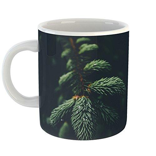 Westlake Art - Wallpaper Christmas - 11oz Coffee Cup Mug - Modern Picture Photography Artwork Home Office Birthday Gift - 11 Ounce (5728-3E872) -
