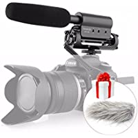 TAKSTAR SGC-598 Photography Interview Shotgun MIC Microphone for Nikon Canon DSLR Camera with Fur Wsheild (With Fur Windsheild)