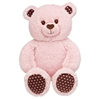 Build a Bear Workshop, Pink Cuddly Hearts Teddy Bear, 16 in. by Build A Bear