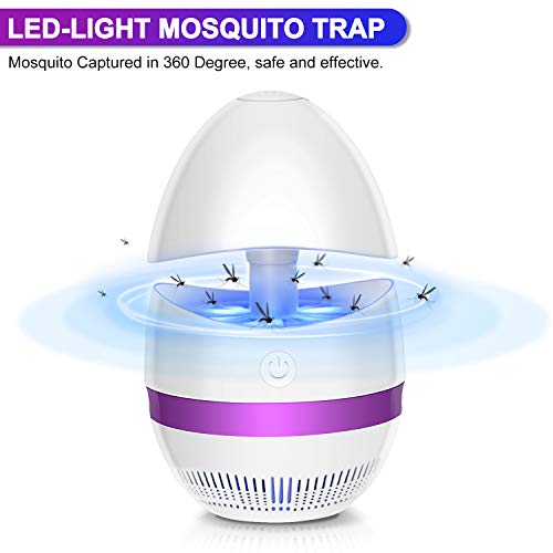Outdoor Insect Killer Lamp in US - 2