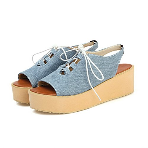 Amoonyfashion Dames Zacht Materiaal Elastisch Open Neus Kitten-hakken Solide Platte Sandalen Blauw