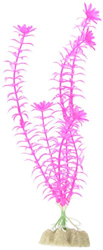 GloFish Large Fluorescent Plant for Aquarium Decoration, Pin