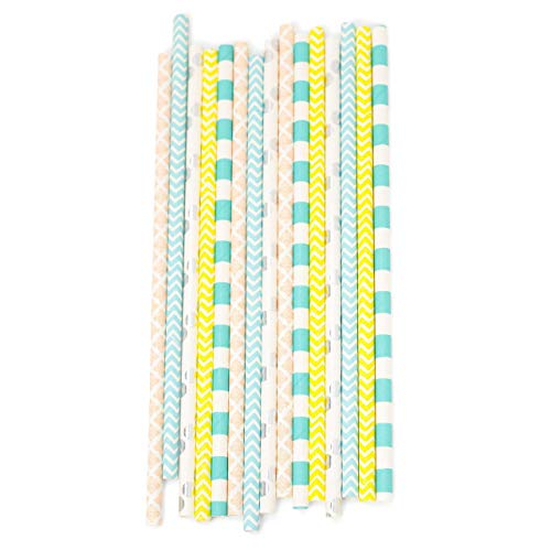 Sherbert Biodegradable Straws (24pc+)