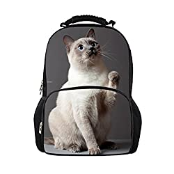 Cute Canadian Hairless Cats Women Backpack 3D Print Zoo Mochila Men Daily Large Capacity Travel Daypack
