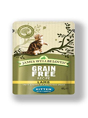James Wellbeloved Kitten Food Turkey Pouch 12 x 85 g Su-Bridge Pet Supplies Ltd 04JWC6