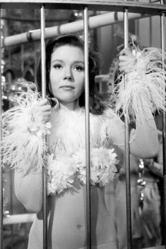 Diana Rigg in The Avengers skimpy costume in giant bird cage 11x17 Mini - Mini Skimpy