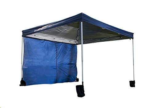 World Famous Sports Sun Canopy, 10'x10', Blue by World Famous Sports