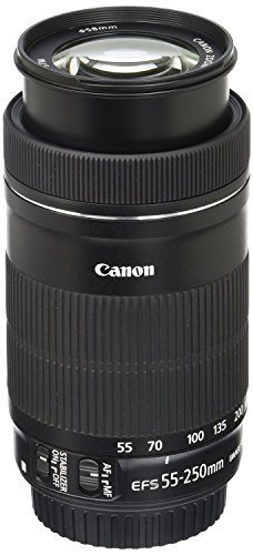 Canon EF-S 55-250mm F4-5.6 is STM Lens for Canon SLR Cameras (Renewed) (Best Professional Camera Lenses)