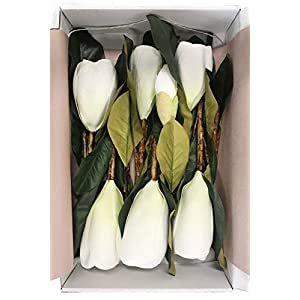 Ling's moment Pack of 6 Large Real Touch Artificial Magnolia Flowers Stems for DIY White Wedding Bouquets Centerpieces Arrangements Home Table Decor 5
