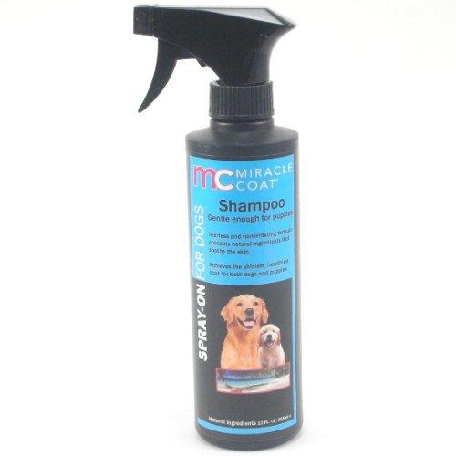 Miracle Coat Dog Shampoo - 5