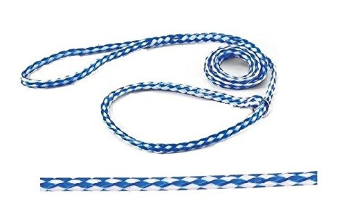 Guardian Gear Kennel Dog Lead Bulk Packs for Dogs Heavy Poly Control Slip Style Rescue Shelter(60 Leads)
