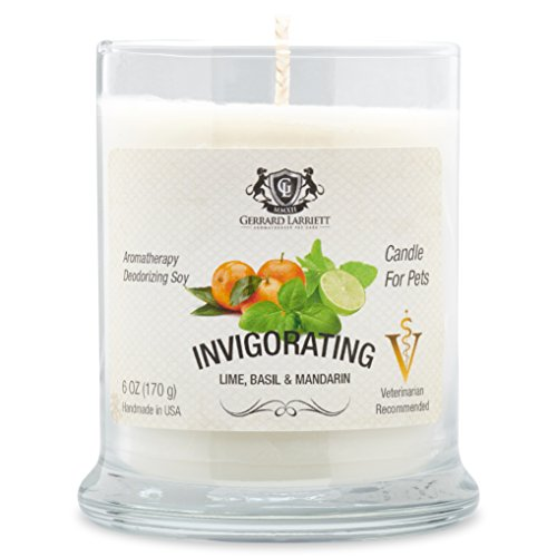 Aromatherapy Deodorizing Soy Candle For Pets, Candles Scented, Pet Odor Eliminator & Animal Lover Gift (Invigorating Lime Basil & Mandarin)