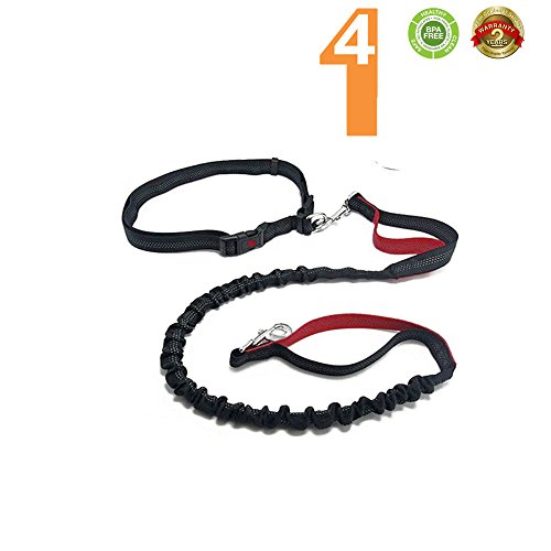 Hands Free Dog Leash for Heavy Duty Dog Walking Running, Durable Dual-Handle Bungee Leash, Reflective Stitching, 5 Foot Long Retractable to 7 Foot , Adjustable Waist Belt (Fits up to 42 waist)