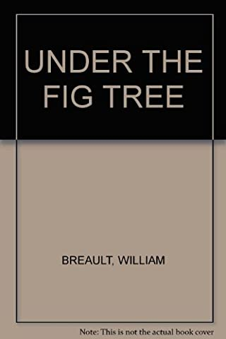 Under the fig tree: Stories of prayer-filled moments - Moments Fig