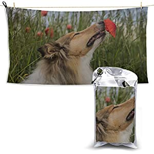 WIEDLKL Cute Gold Rough Collie Sniffing Red Bathroom Towels Microfiber Kids Sport Towel Sport Towel for Women Beach Towel Funny 27.5'' X 51''(70 X 130cm) Best for Gym Travel Camp Yoga Fitnes 2