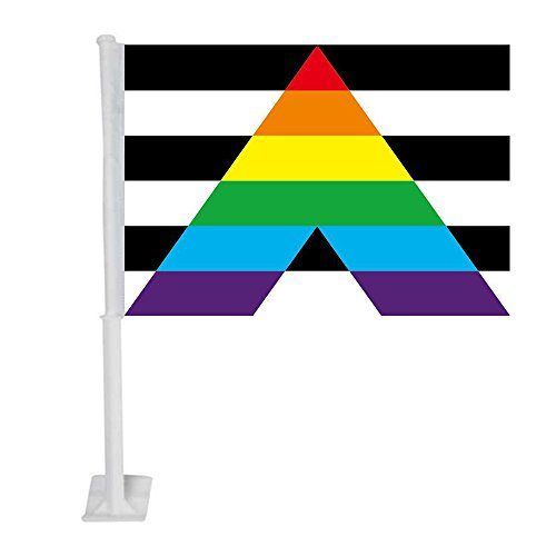 APFoo Straight Ally car window flag 12x18inch with pole