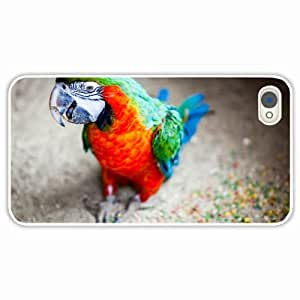 Customized Apple iPhone 4 4S Hard PC Case Diy Personalized DesignCover Parrots background White
