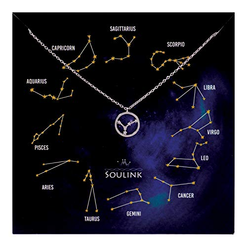 Soulink Universe Astrology Constellation Tropical Zodiac Sign in Circle Necklace (Cancer (22 Jun - 22 Jul)_Silver) ()